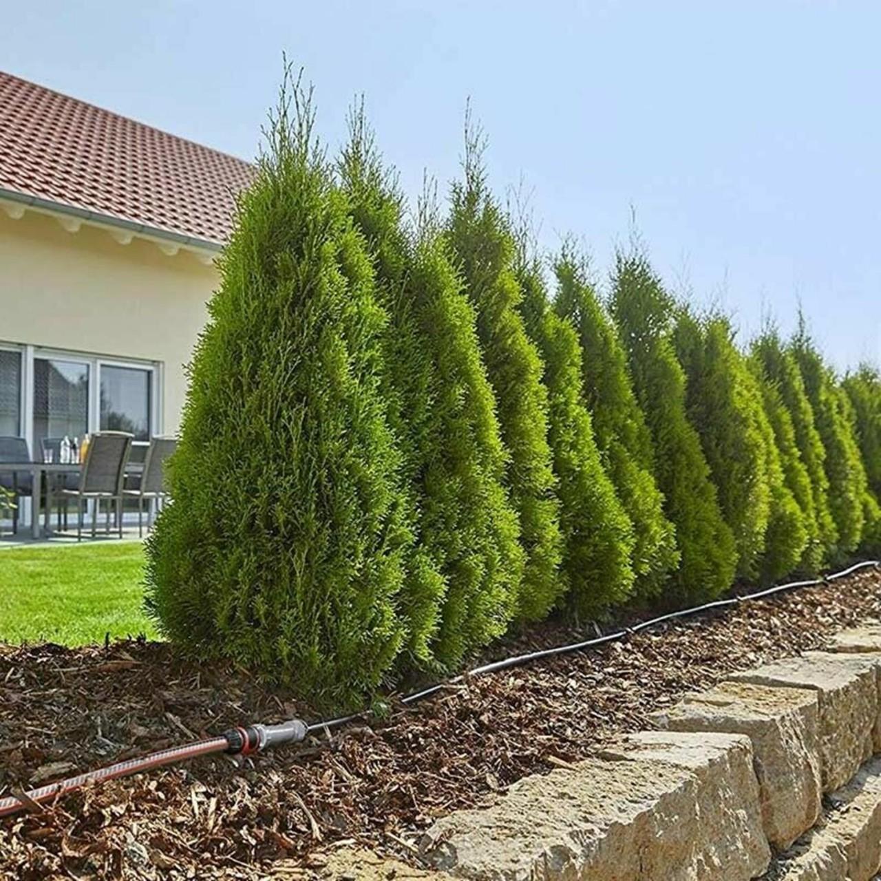 Gardena Micro-Drip-System Start Set Pflanzreihe L 13013-20 Tropfrohr 50m Garten